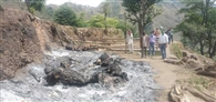 पटियाना गांव की छानी में भीषण आग, 8 मवेशी जिदा जले