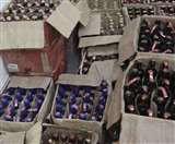 अधर में लटकी शराब घोटाले की जांच, रिटायर हुए SIT के अहम सदस्य, नहीं मिली एक्सटेंशन