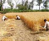 कृषि कार्यो में सतर्कता के साथ सावधानी है जरूरी, हाथ की जगह मशीनों से काम करने पर सरकार का जोर