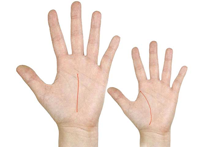 all about palmistry 10 points