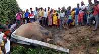 ज्ञानेश्वरी एक्सप्रेस से टकराए 3 हाथी, मौत, टल गया बड़ा हादसा