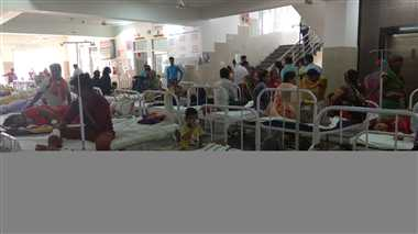 बुखार का तांडव जारी, 15 और मौतें