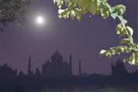 ताज रात्रि दर्शन का पर्यटकों में क्रेज