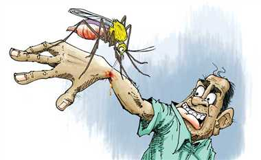 डेंगू से लड़ने की तैयारी ताकि मौत का सबब न बने बीमारी