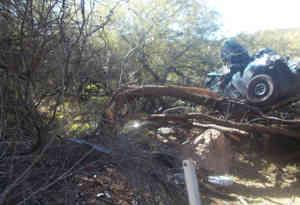 अमेरिका में हाईवे से 50 फीट नीचे गिरकर पेड़ पर अटकी कार, हादसे के छह दिन बाद बचाई गई महिला
