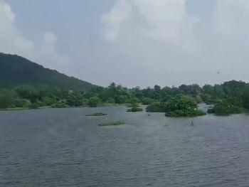 चेन्न्ई जू की सूखी झील में आई जान, ट्विटर पर वन अधिकारी के वीडियो ने जीता लोगों का दिल