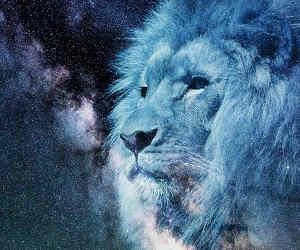 दैनिक राशिफल 16 जनवरी : सिंह राशि वाले... खर्चे बढ़े रहेंगे, पर अपना धैर्य ना खोएं, आज आपकी किस्मत में बहुत कुछ नया है