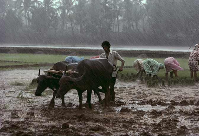 कन्याकुमारी से कश्मीर को बढ़ रहा मानसून, अन्य प्रदेशों को भी भिगोएगा कुछ ऐसे...