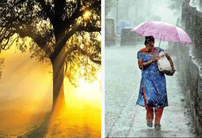 संडे को उमस से बेहाल रहेंगे यूपी के शहर, जानें उत्तर भारत समेत पूरे देश में बारिश का हाल
