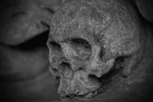 श्रीलंका में एक कब्र से मिले 230 नरकंकाल, अभी भी मिलने का सिलसिला जारी