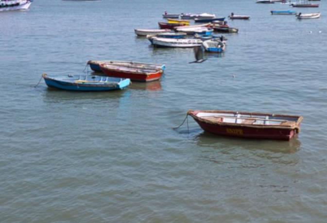कुंभ 2019 : एयरबोट से डेढ़ घंटे में पहुंचेंगे काशी से प्रयागराज