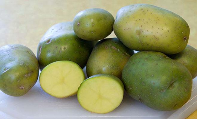 सेब के बीज में होता है खतरनाक साइनाइड,इन फल-सब्जियों को भी खाते समय रहें सावधान