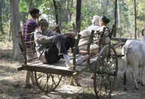 तस्वीरें: अमिताभ बच्चन ये कहां बैलगाड़ी की सवारी और गांव की खटिया का मजा ले रहे