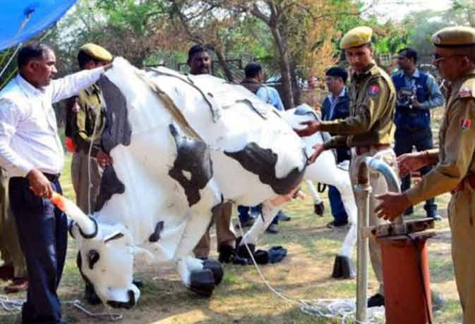 जयपुर: राजे ने खेद जताया, एसएचओ हटाए गए
