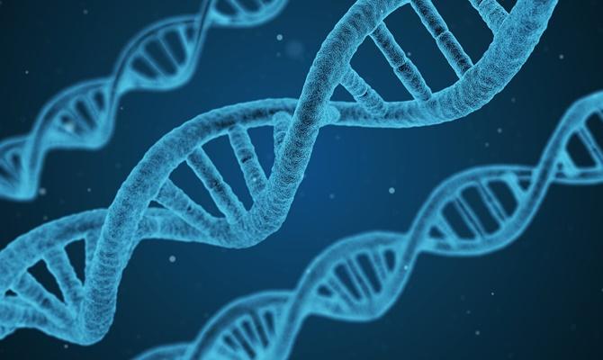 कुछ सालों में अमरीका अपनी खुफिया सूचनाओं को DNA में करेगा स्टोर!