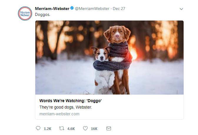 कुत्ते को अब डॉग नहीं कहेंगे डोगोज, डिक्शनरी में शामिल होगा यह शब्द