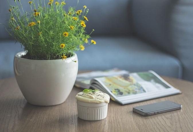 फेंगशुई टिप्स: रसोई घर,खाना और फैमिली फोटो में छिपा है खुशहाली का राज,अपनाएं ये 5 आसान उपाय