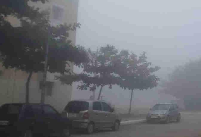 माैसम :  दिल्ली, हरियाणा व यूपी में कोहरा, जानें संडे काे कैसा रहेगा मौसम का मिजाज