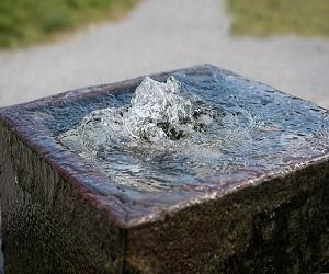 फेंगशुई टिप्स: नमक, फव्वारे और ऐसी मूर्तियों के इस्तेमाल से बदलेगी किस्मत, घर में होगी खुशहाली