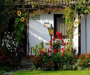 वास्तु टिप्स: कौन से पेड़-पौधों आपके घर के लिए होते हैं शुभ, जानें ये 7 प्रमुख बातें