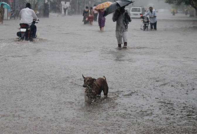 गुजरात में जारी बारिश का कहर: 50 से अधिक लोगों की मौत, चक्रवात की चेतावनी