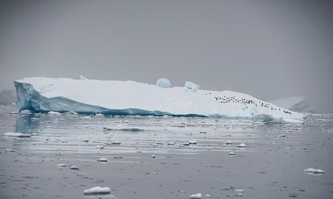 दुनिया का सबसे विशाल बर्फ का टुकड़ा 18 साल यात्रा करने के बाद अब गायब होने जा रहा है