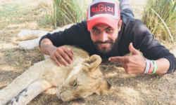 टीम इंडिया के इस खिलाड़ी ने असली शेर के साथ खिंचाई फोटो, फैंस हुए हैरान