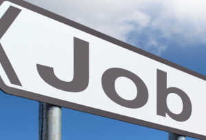 नौकरियां: रिसोर्स पर्सन की 200 से ज्यादा पोस्ट खाली, 45 साल मैक्सिमम ऐज