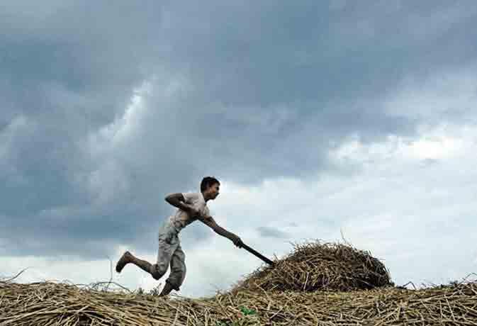17 मई तक भारत में दस्तक देगा मानसून