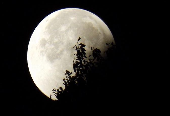 इन राशि वालों के लिए कष्टदायी हो सकता है चंद्रग्रहण,जानें क्या होगा प्रभाव?