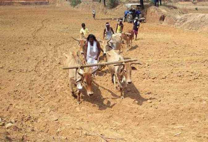 ये केंद्रीय मंत्री सचमुच अपने खेतों में चलाते हैं हल, बोते हैं बीज
