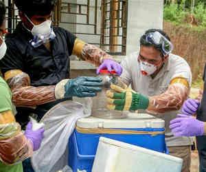 देश में पहली बार मलेशियार्इ वायरस निपाह का प्रकोप, केरल में ली नौ की जान