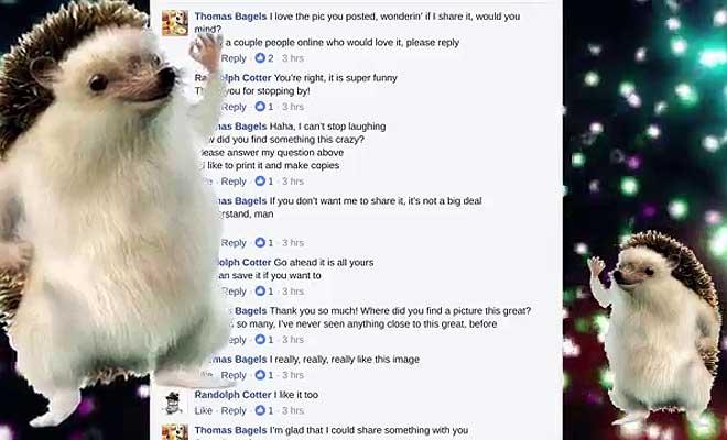 फेसबुक कमेंट्स के लिरिक्स पर गाया ऐसा रैप सॉन्गू, जिसे सुनकर हनी सिंह भी हो जाएंगे बेहोश!