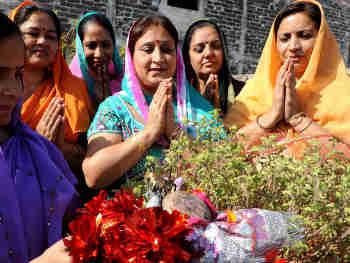 9 नवंबर को तुलसी विवाह और प्रदोष व्रत, ये रहे हफ्ते के अन्य व्रत-त्योहार